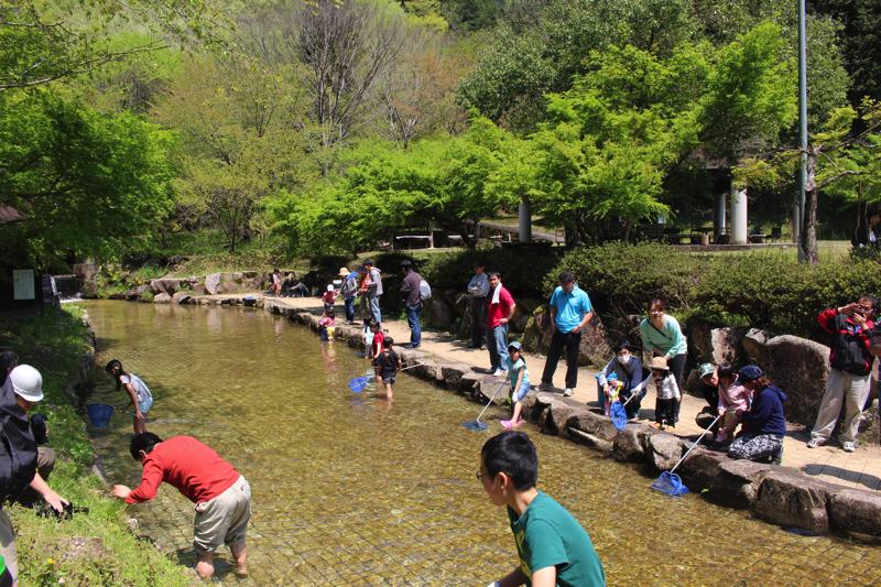 岐阜県関市のキャンプ場-水遊び
